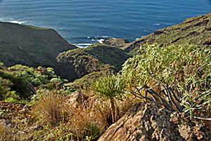 coastal and seelandscape of La Palma